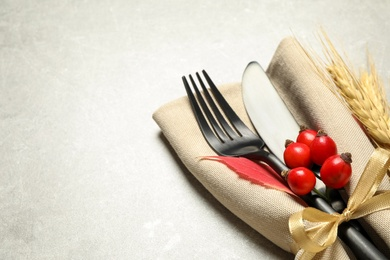 Cutlery, rosehip berries and napkin on light table, closeup with space for text. Thanksgiving Day