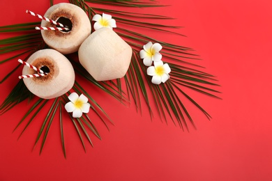 Fresh coconuts with drinking straws and flowers on red background, flat lay. Space for text