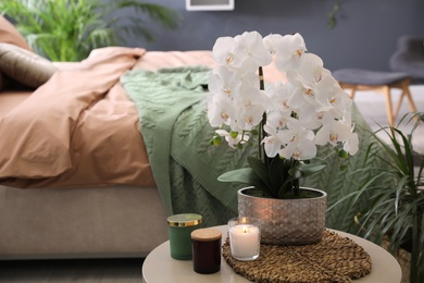 Beautiful white orchids and candles on table in bedroom, space for text. Interior design