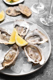 Fresh oysters with lemon and ice on grey table, closeup