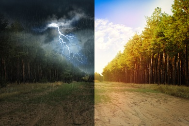 Wide sandy road near pine forest during sunny and stormy weather, collage