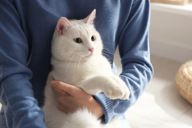 Young woman with her beautiful white cat at home, closeup. Fluffy pet