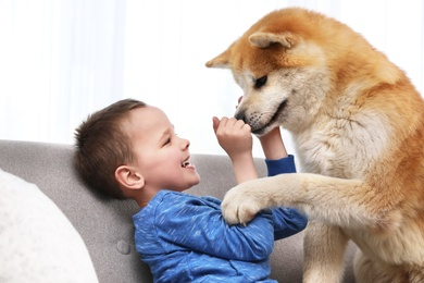 Happy boy with Akita Inu dog on sofa. Lovely friends