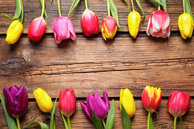 Beautiful spring tulips on wooden background, flat lay. Space for text