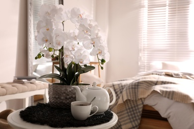 Beautiful white orchids and tea set on table in room, space for text
