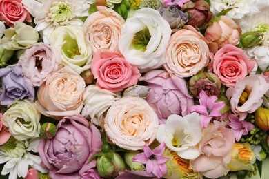 Beautiful floral composition as background, top view
