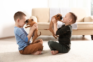 Portrait of cute boys with funny Brussels Griffon dogs at home. Loyal friends