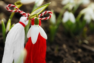 Traditional martisor on beautiful snowdrop outdoors, closeup. Beginning of spring celebration
