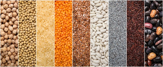 Collage with photos of different legumes and seeds, banner design. Vegan diet