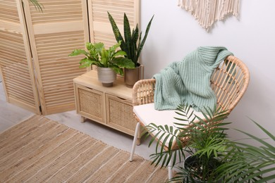 Stylish room interior with beautiful potted plants and modern furniture