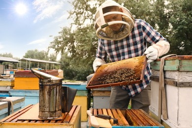 Beekeeper with hive frame at apiary. Harvesting honey
