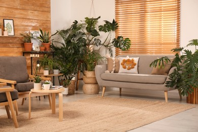 Stylish room with beautiful plants and wooden wall. Interior design