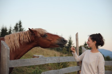 Woman with beautiful horse near wooden fence outdoors. Lovely domesticated pet