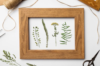 Flat lay composition with frame of wild dried meadow flowers on white background