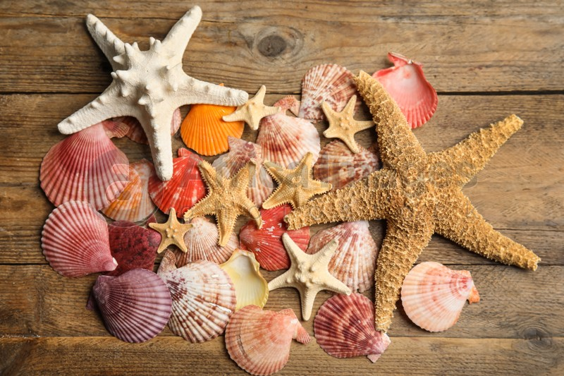 Beautiful sea stars and shells on wooden background, flat lay