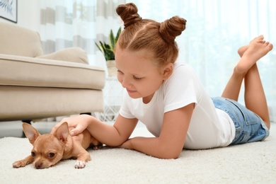 Cute little child with her Chihuahua dog on floor at home. Adorable pet