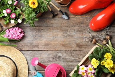 Flat lay composition with gardening equipment and space for text on wooden background