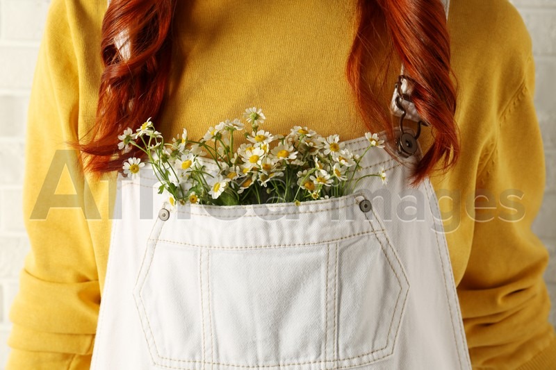 Woman with beautiful tender chamomile flowers in white jumpsuit's pocket, closeup