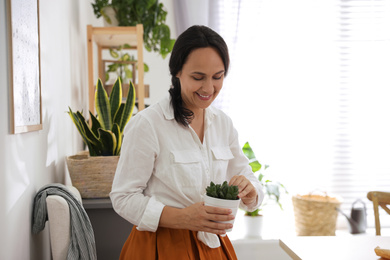 Mature woman with succulent plant at home. Engaging hobby