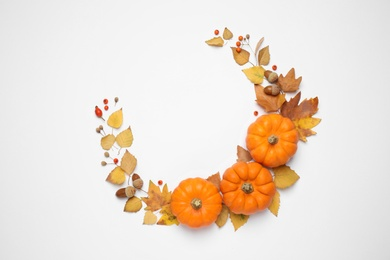 Composition with ripe pumpkins, autumn leaves, berries and acorns on white background, top view