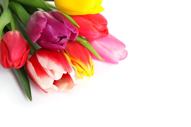 Beautiful bright spring tulips on white background, closeup