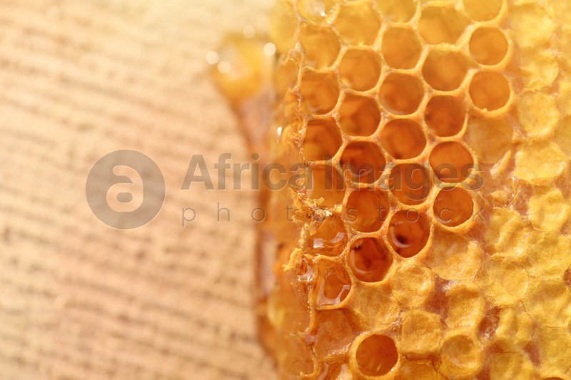 Piece of fresh honeycomb on wood stump, top view. Space for text
