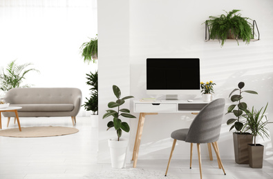 Modern workplace in room decorated with green potted plants. Home design