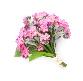 Bouquet of beautiful pink Forget-me-not flowers on white background, top view