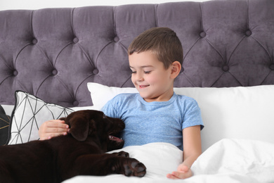 Funny puppy and little boy in bed at home. Friendly dog