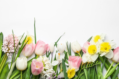 Beautiful spring flowers on white background, top view