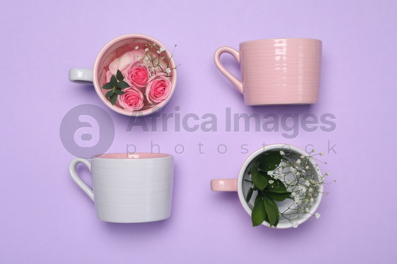 Cups with flowers on violet background, flat lay