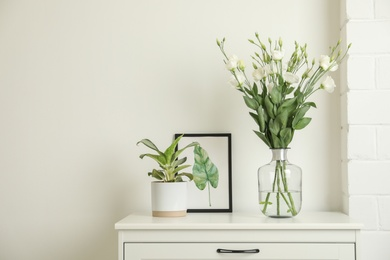 Decorative vase with flowers and houseplant on commode indoors