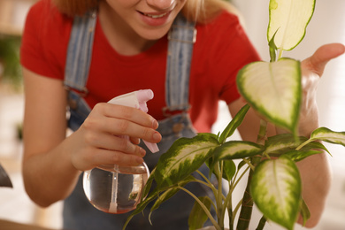 Young woman spraying Dieffenbachia plant at home, closeup. Engaging hobby