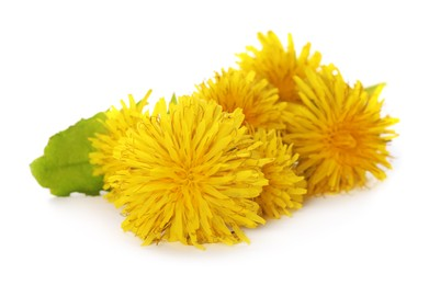 Beautiful yellow dandelions with leaf on white background