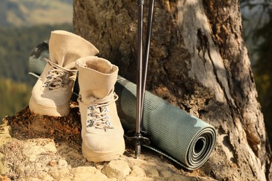 Trekking poles, mat and hiking boots near tree in wilderness on sunny day