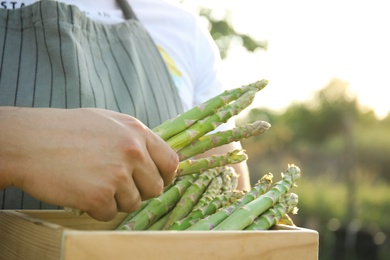 Man holding wooden crate with fresh raw asparagus outdoors, closeup