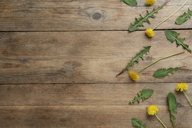 Flat lay composition with beautiful yellow dandelions on wooden table. Space for text
