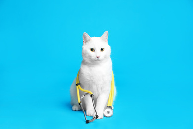 Cute cat with stethoscope as veterinarian on light blue background