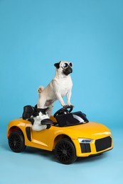 Funny pug dog and cat in toy car on light blue background