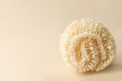 Natural shower loofah sponge on beige background. Space for text