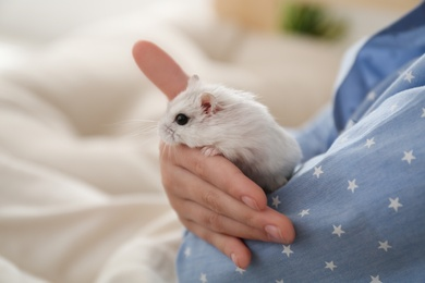 Little girl with cute hamster at home, closeup