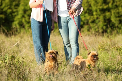Owners walking their adorable Brussels Griffon dogs in park