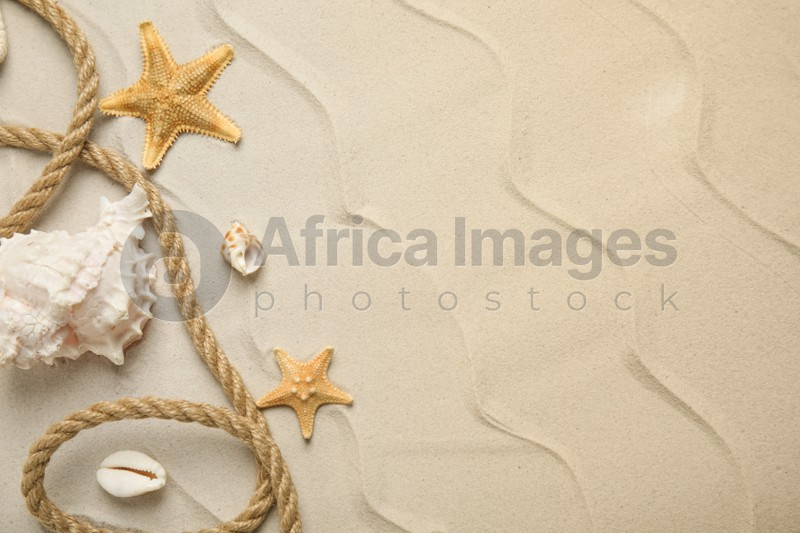 Beautiful sea stars, shells and rope on sand, flat lay. Space for text