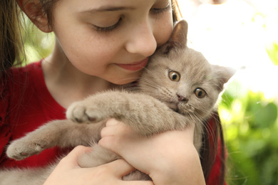 Girl holding Scottish straight baby cat on blurred background, closeup