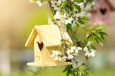 Bird houses hanging outdoors, focus on yellow one