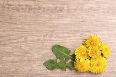 Beautiful yellow dandelions and leaves on wooden table, flat lay. Space for text