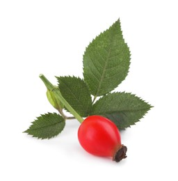 Ripe rose hip berry with green leaves on white background