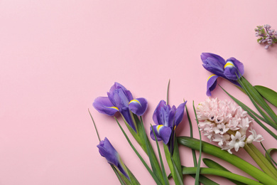 Flat lay composition with spring flowers on pink background. Space for text