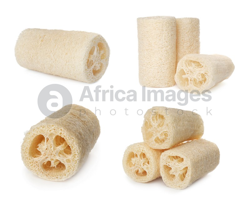 Set with natural shower loofah sponges on white background