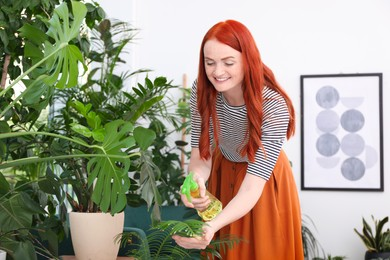 Beautiful woman taking care of houseplant in room